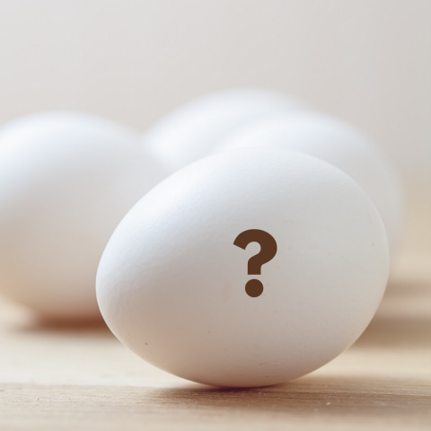 4 white eggs, one with a question mark on it
